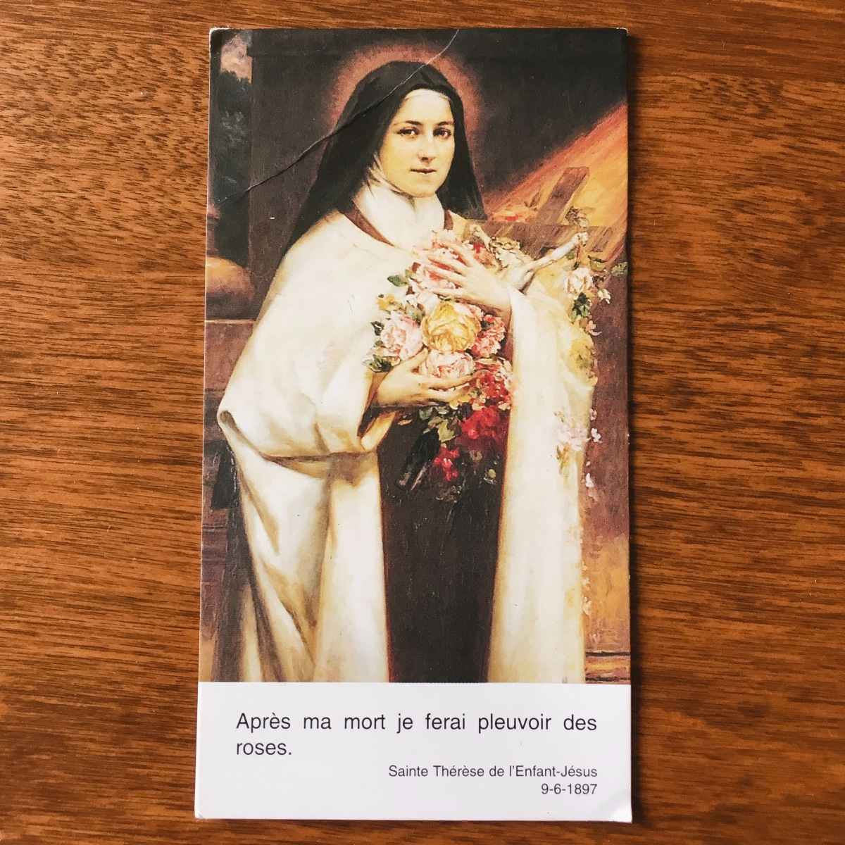 After my death, I will let fall a shower of roses - St. Therese